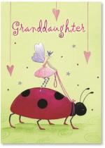 Fairy Riding Lady Bug