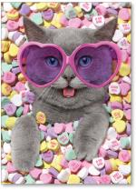 Cat in Heart candy w/heart glasses