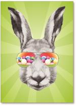 Rabbit with sunglasses.