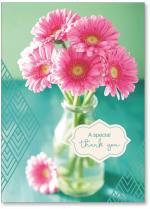 photo pink daisies with teal background