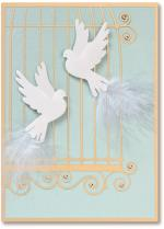 two white doves in a bird cage