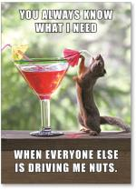 squirrel with cocktail